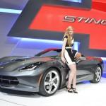 Motor Show 2013 - 10